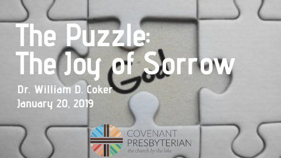 The Puzzle_ The Joy of Sorrow